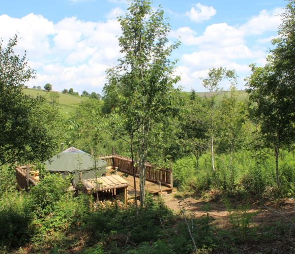 yurt holiday wales, forest holidays wales, large family holidays